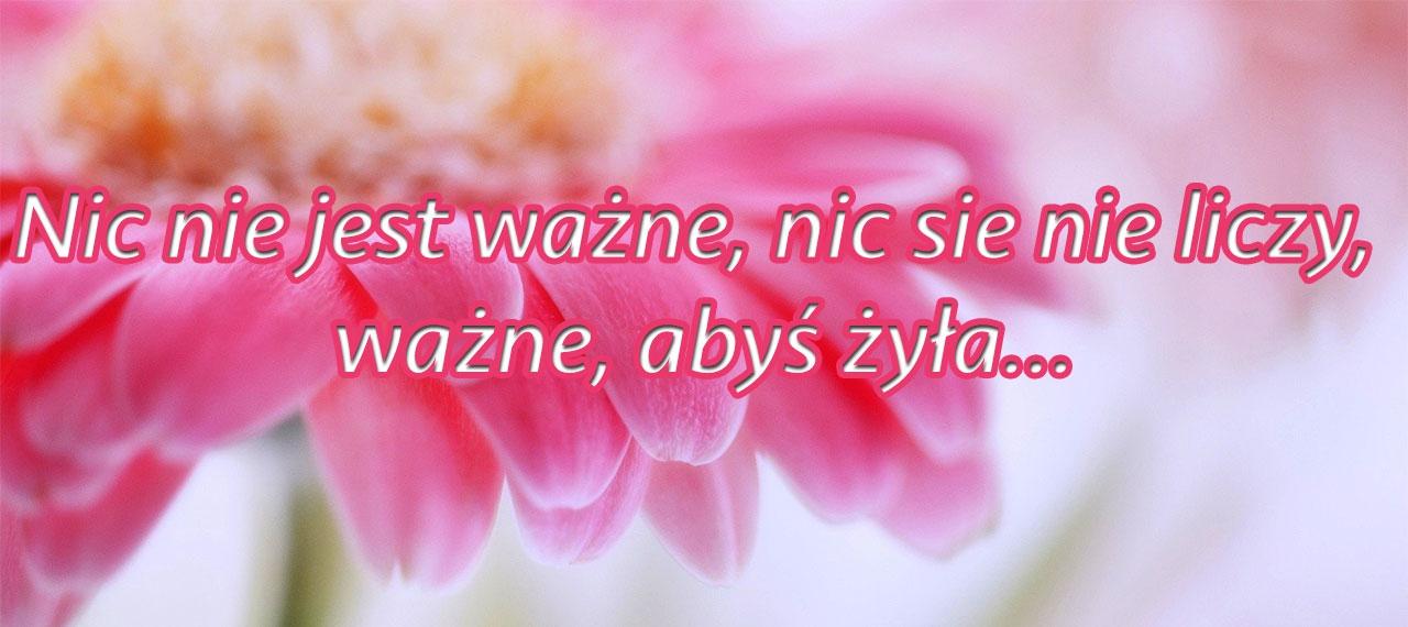 Nasze historie - Nic nie jest ważne, nic się nie liczy, ważne, abyś żyła...
